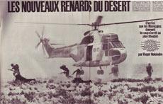 renards_desert