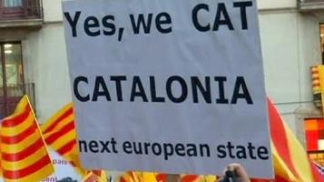 yes-we-cat